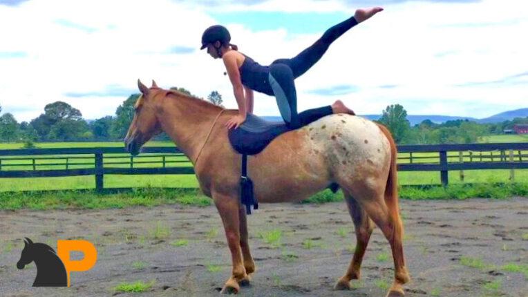 آمادگی جسمی در اسب سواری