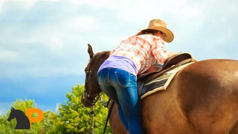 سوار شدن اسب