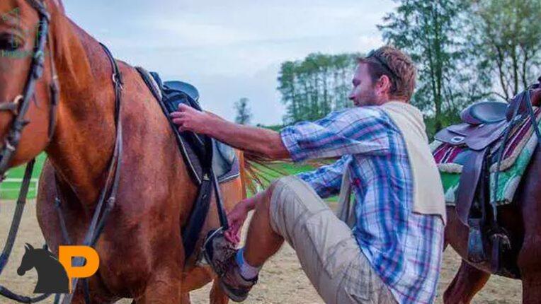 آموزش اسب سواری