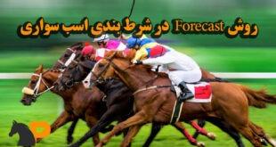 روش Forecast در شرط بندی اسب سواری