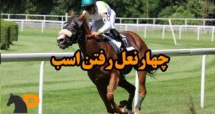 چهارنعل اسب