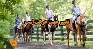 تغییر جهت حرکت اسب