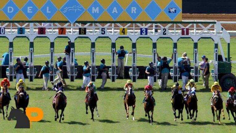 نان رانر در شرط بندی اسب سواری